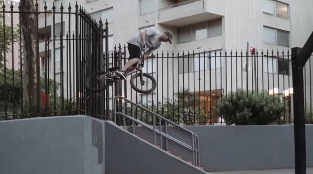 animal-bikes-nyc