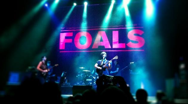 foals131